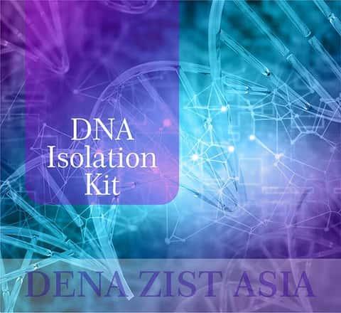 دستهی همه انواع کیتهای استخراج DNA شرکت دنازیست آسیا