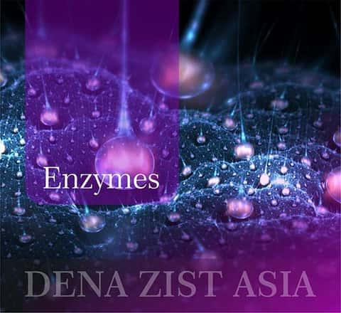 دستهی همه انواع آنزیمهای شرکت دنازیست آسیا
