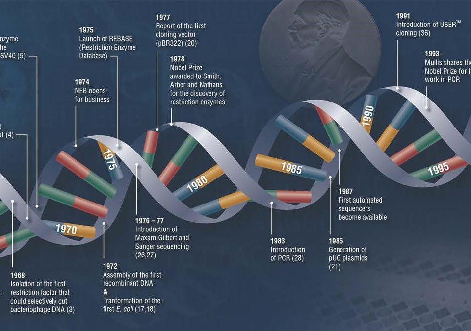 کلونینگ مولکولی - Molecular cloning